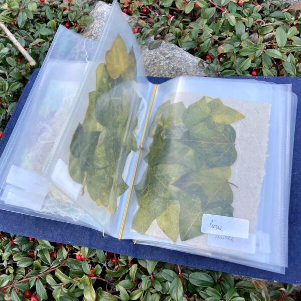 protège carnet en papier végétal et papier lavable